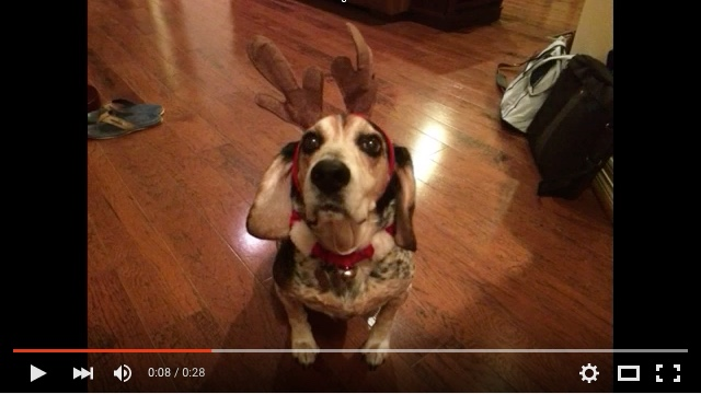 3 Fun (and Easy!) Ideas for Holiday Video Content